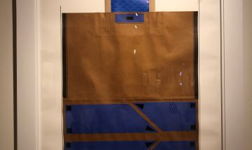 Carl Vincent Williams 1, My Bag In Blue